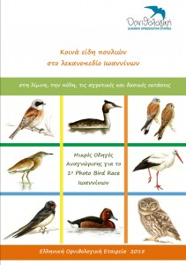 BIRD_GUIDE_Photo_Bird_Race_Ioannina_@ORNITHOLOGIKI