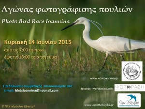 Ioannina photo bird race2015