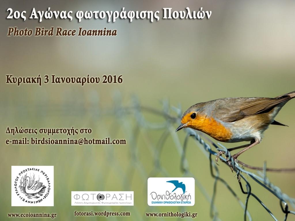 Ioannina photo bird race 2016