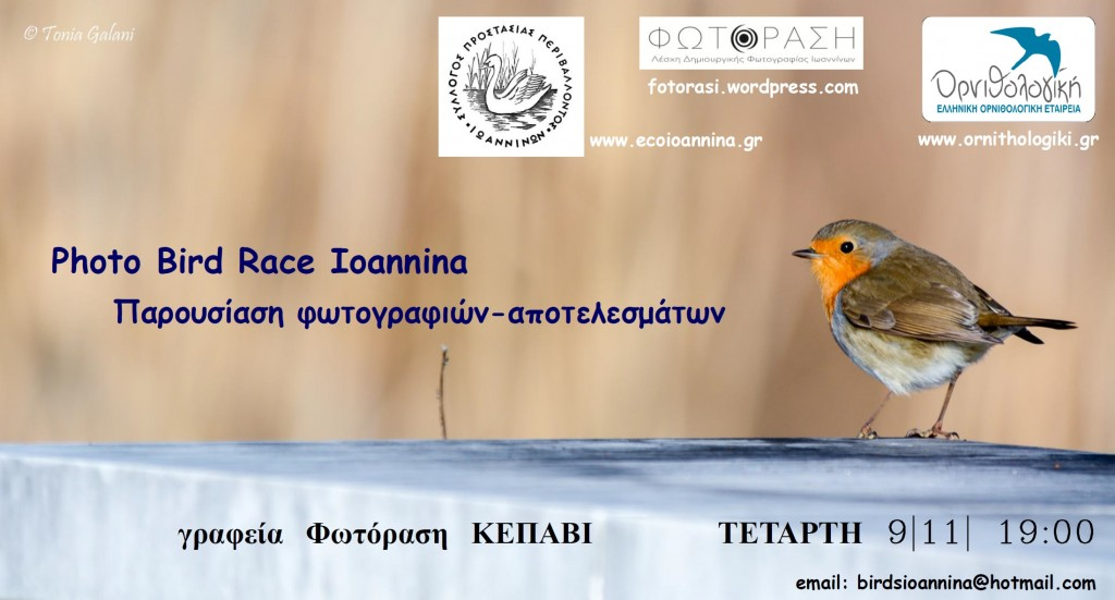 apotelesmata photo bird race2015